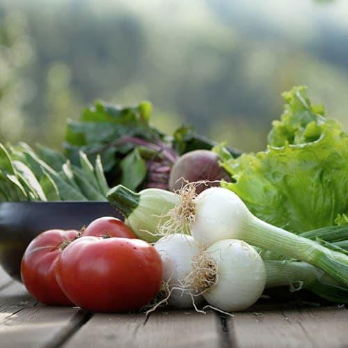 nutricionista salud