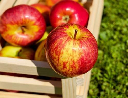 Una manzana muestra lo irracional que es nuestro sistema alimentario