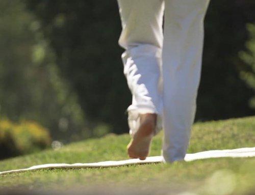 5 ejercicios esenciales del yoga para practicar al aire libre