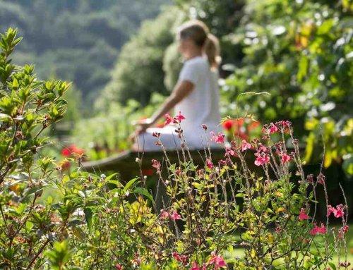 Ejercicio de yoga para sacar el estrés de tu cuerpo